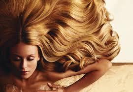 pousse de cheveux
